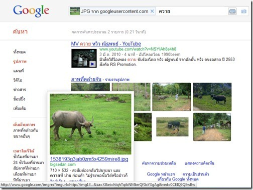 Google_Image_Search_Buffalo_20111021_05