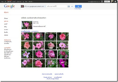 Screenshot_Google_Image_Search_20111021_03