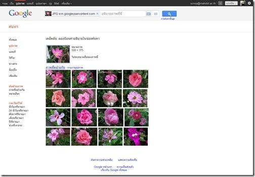 Screenshot_Google_Image_Search_20111021_03