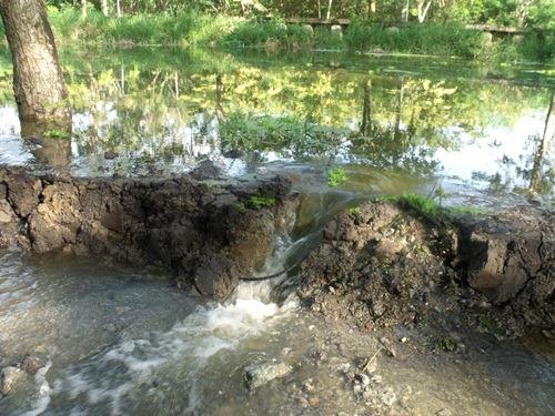 หมู่บ้านปาริชาต ปิ่นเกล้า กับน้ำท่วม 2554 (3/6)