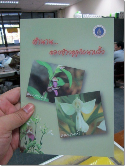 Kulu_Nangaua_20120109_01
