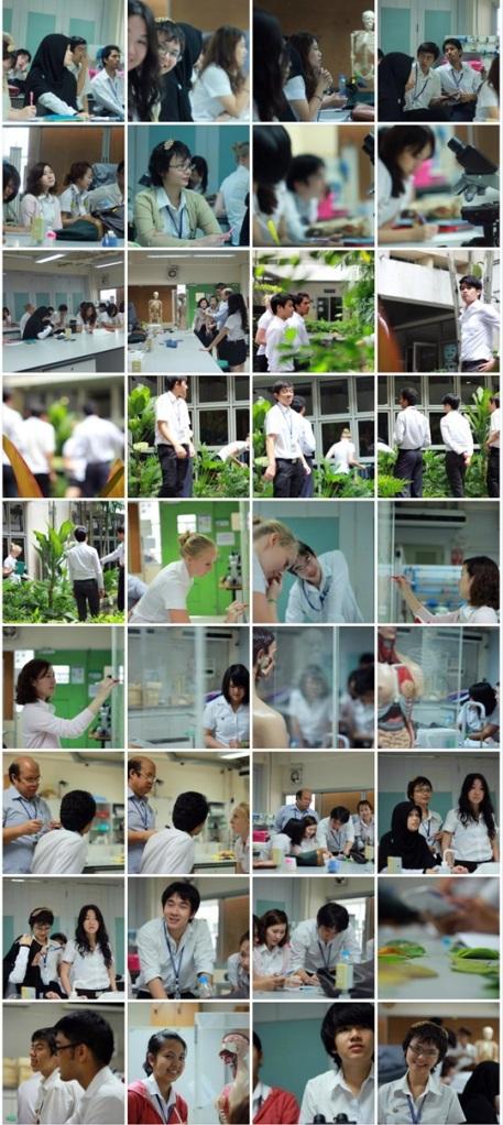Ecology_at_MUIC_20121127_01
