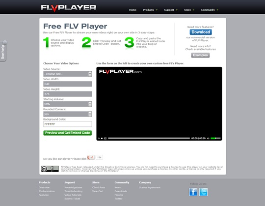FLVPlayer_Free_2013
