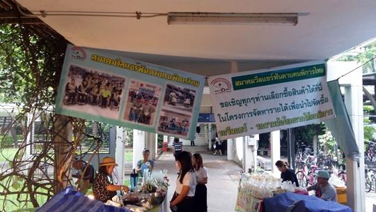 fencing_wheelchair_market_20161111